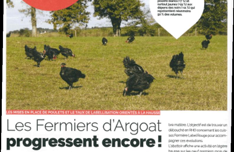 Les Fermiers d'Argoat progressent encore ! Poulets noirs fermiers d'Argoat